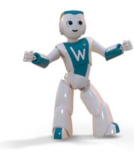 robot wizeo